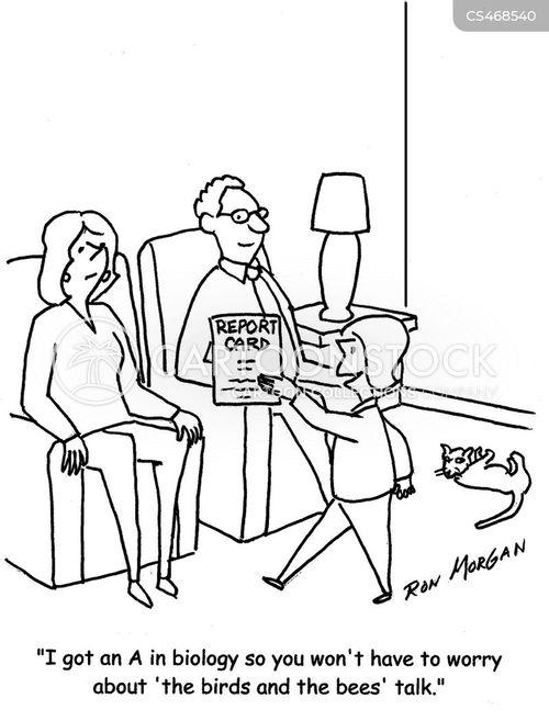 a grades cartoon