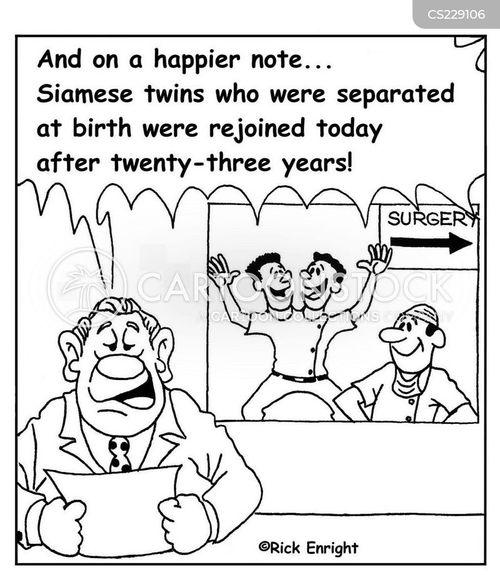 separated at birth cartoon