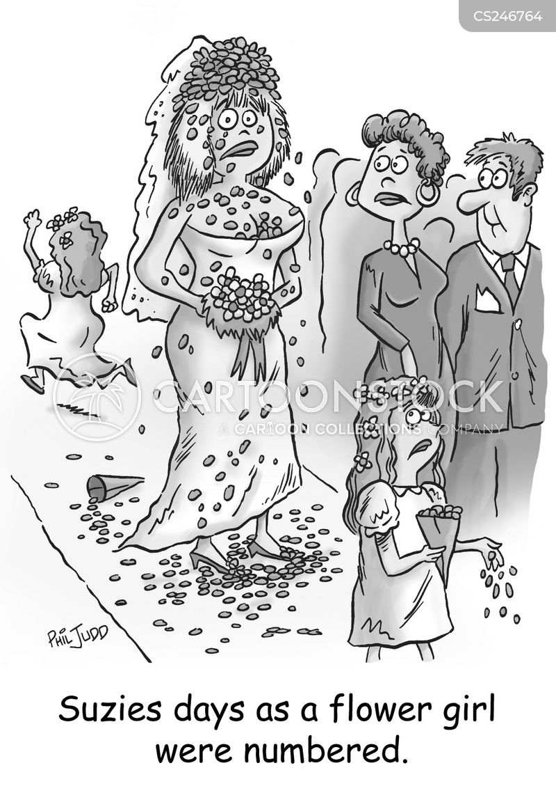 bridesmaids cartoon