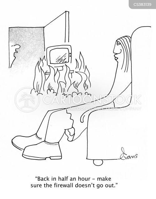 firewalls cartoon