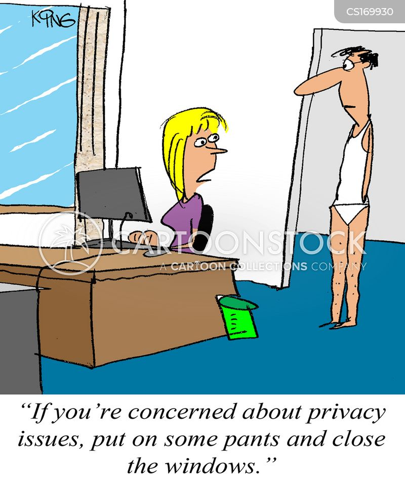 internet security cartoon