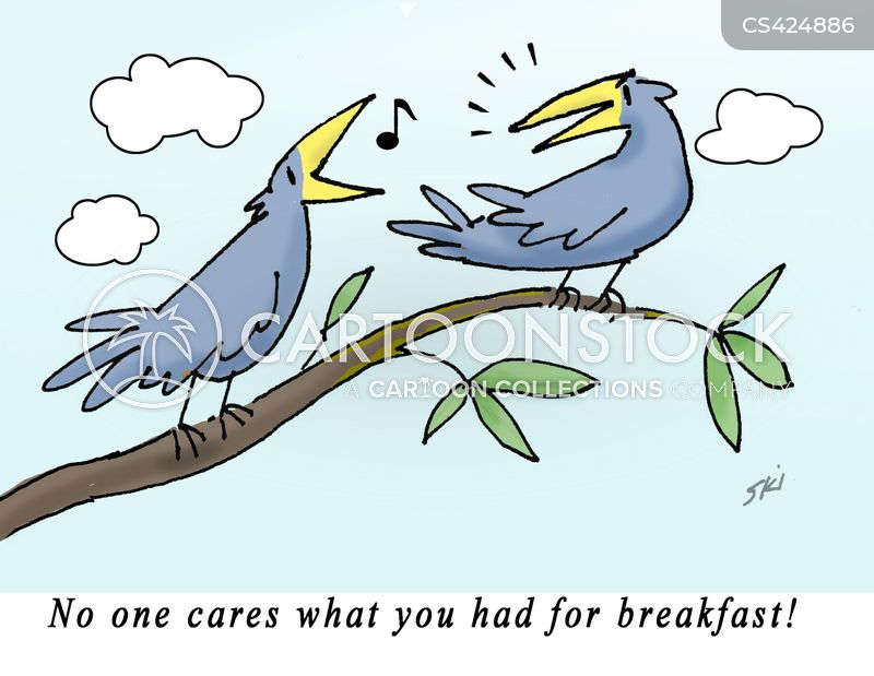 bird-songs cartoon