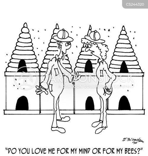 apiculture cartoon