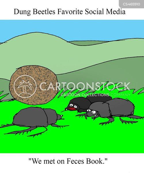 dung-ball cartoon