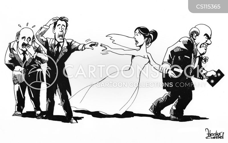 wedding nights cartoon