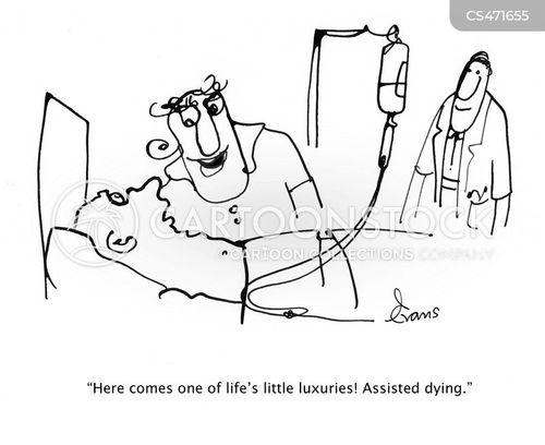hospice cartoon