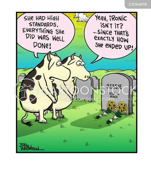 beefs cartoon