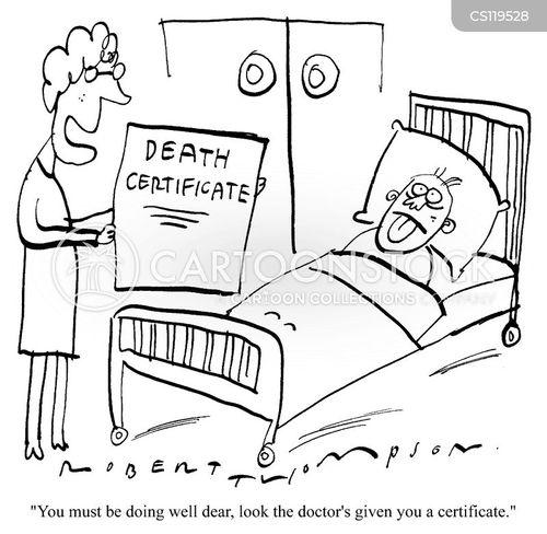 certification cartoon