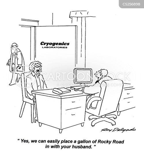 funeral arrangements cartoon