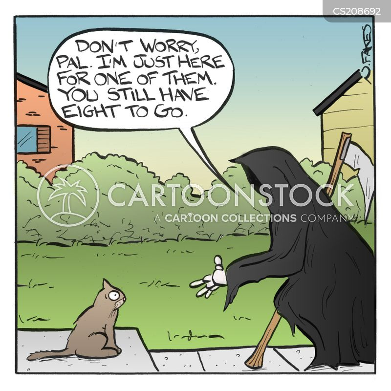cat myth cartoon