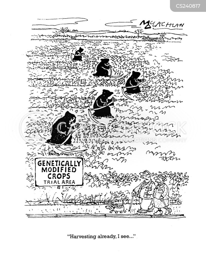 market garden cartoon