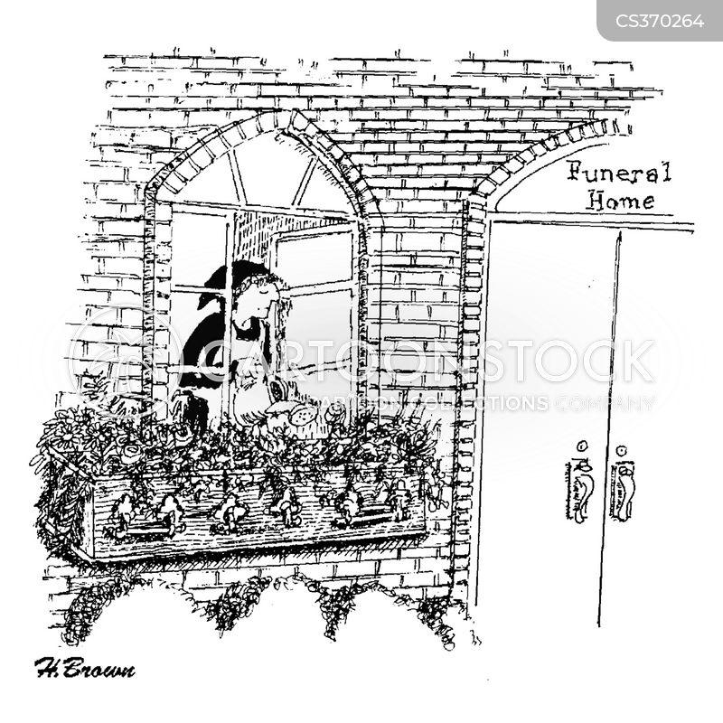 flower boxes cartoon