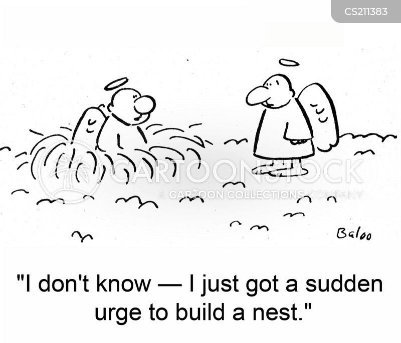 nest building cartoon