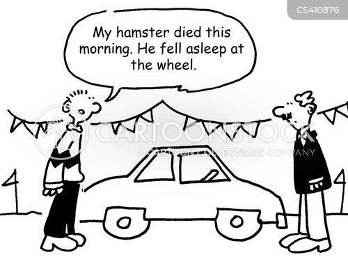 pet hamsters cartoon