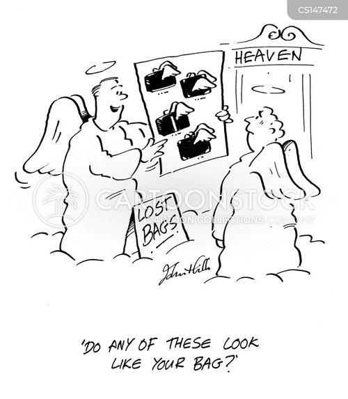 missing baggage cartoon