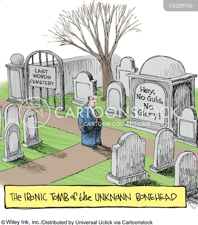 tomb of the unknown soldier cartoon
