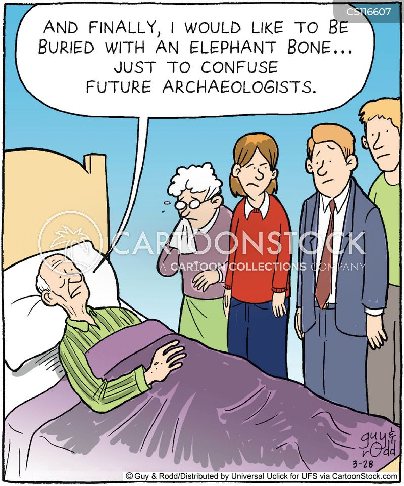 final wishes cartoon