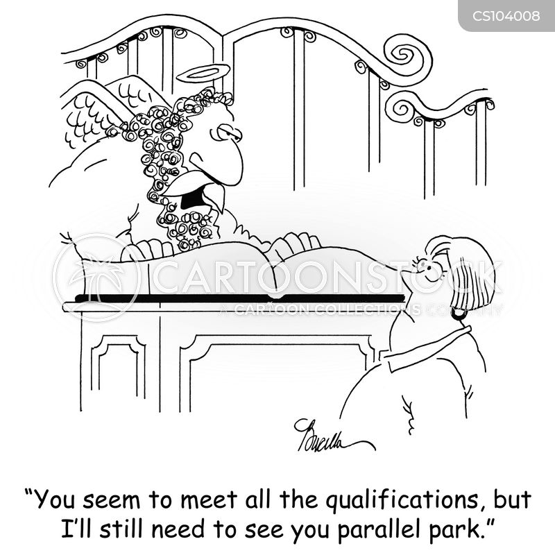 entry requirements cartoon