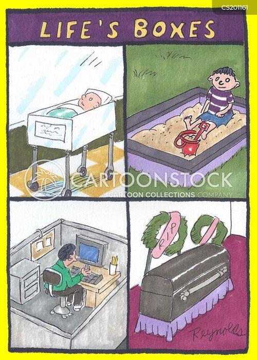 life cycles cartoon