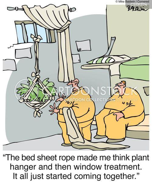 drapes cartoon