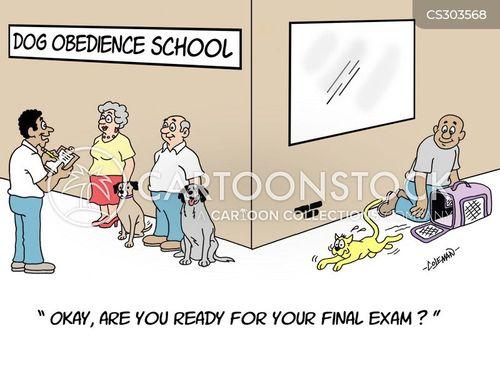 final exam cartoon