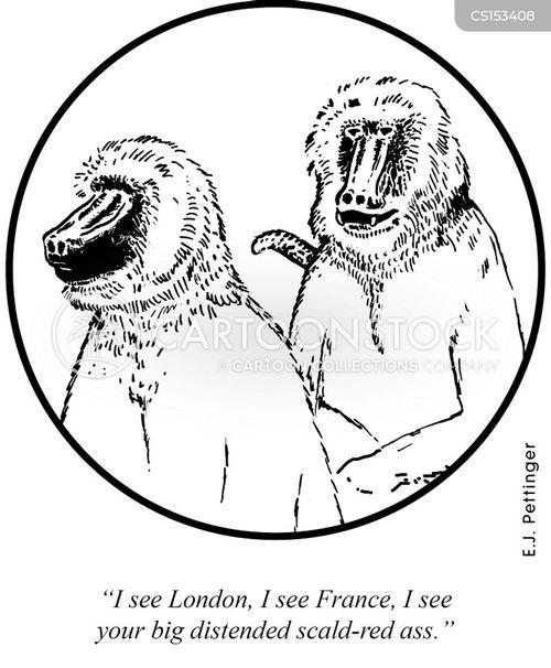 rhyming cartoon