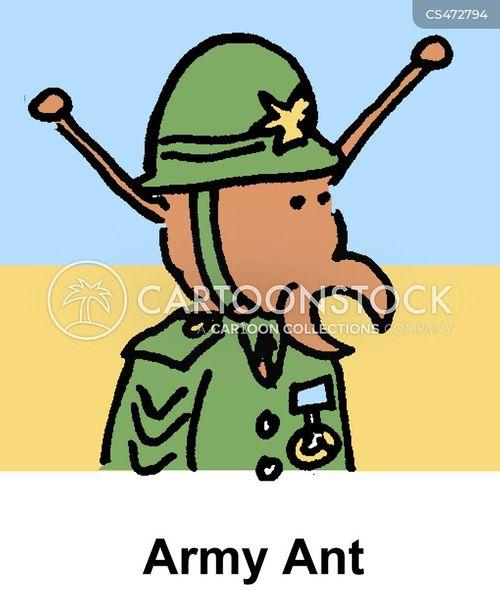 military general cartoon