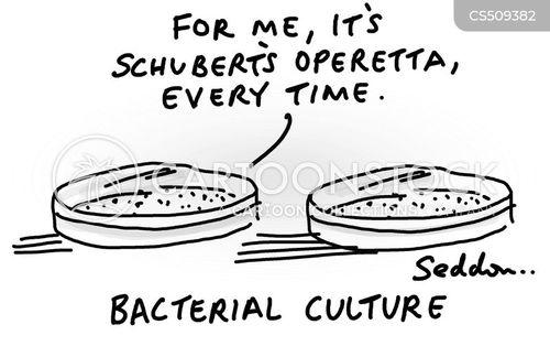 bacterial cartoon