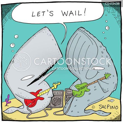 whalesongs cartoon