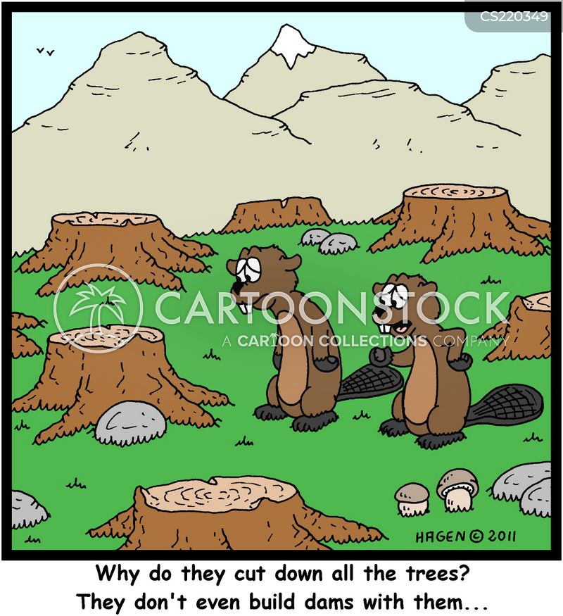 Timbers cartoons, Timbers cartoon, funny, Timbers picture, Timbers pictures, Timbers image, Timbers images, Timbers illustration, Timbers illustrations