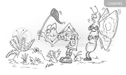 butterfly catchers cartoon