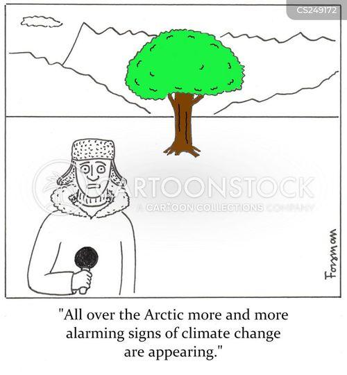 greenland cartoon