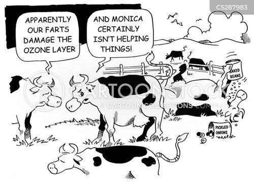exacerbating cartoon