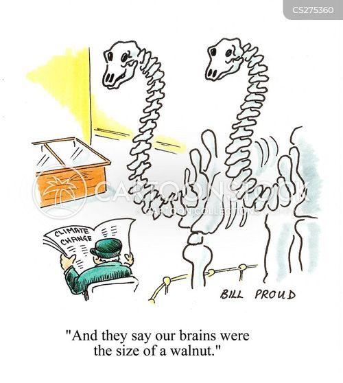 University of arizona carbon dating dinosaur bones cartoon