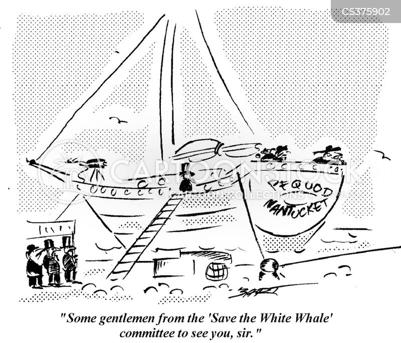 save the whales cartoon