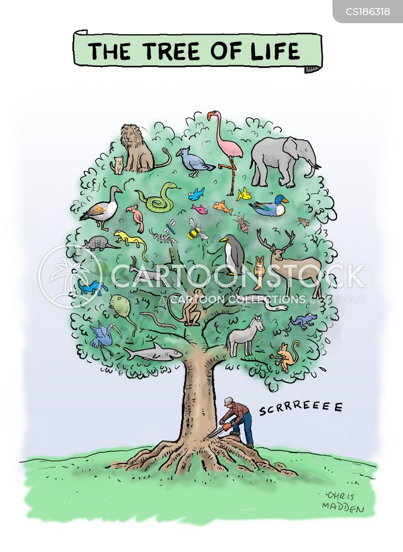 ecosystem cartoon