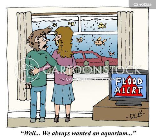 flood warnings cartoon