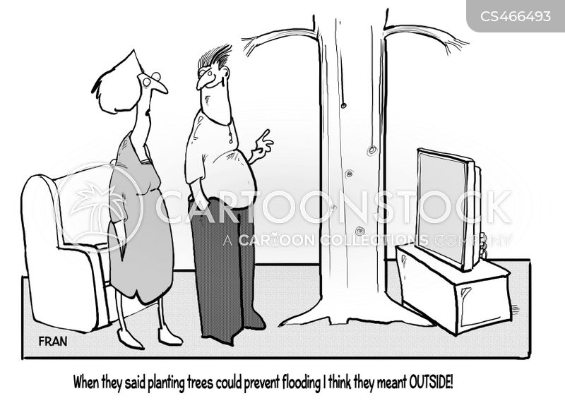 flood prevention cartoon