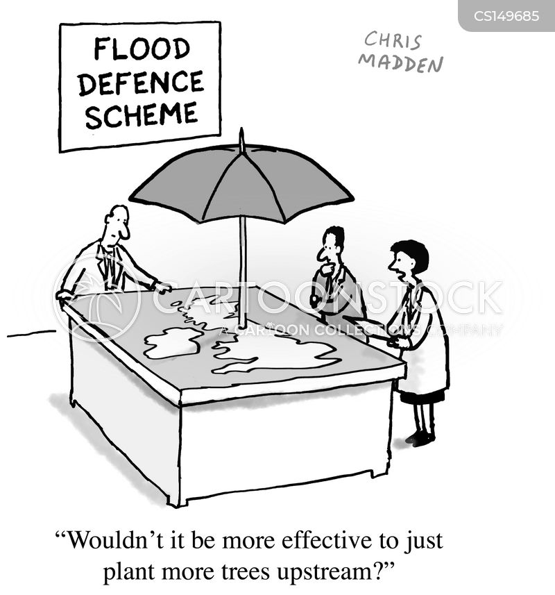flood defence cartoon
