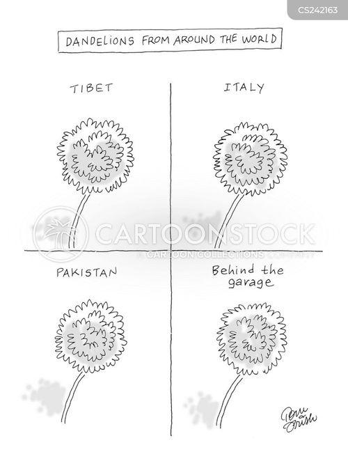 prisk cartoon