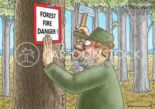 wood fires cartoon