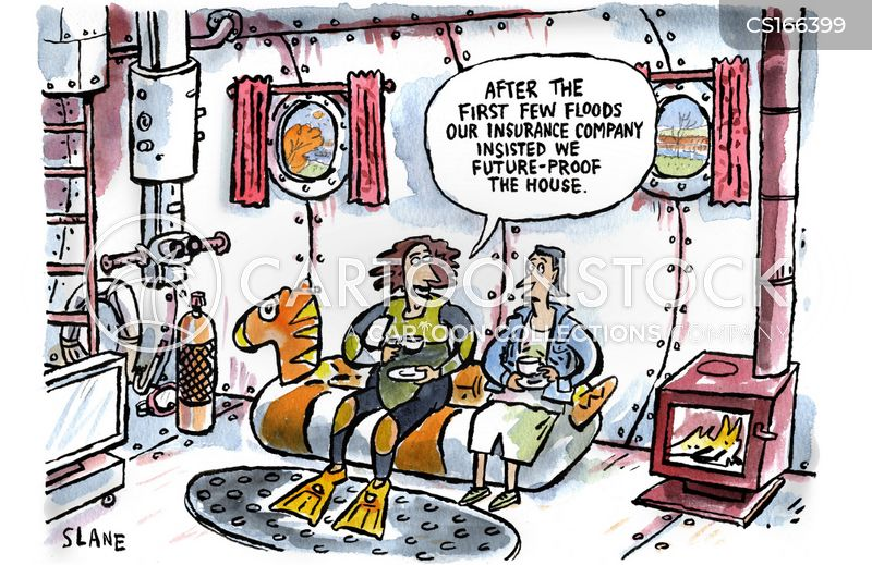home insurance cartoon