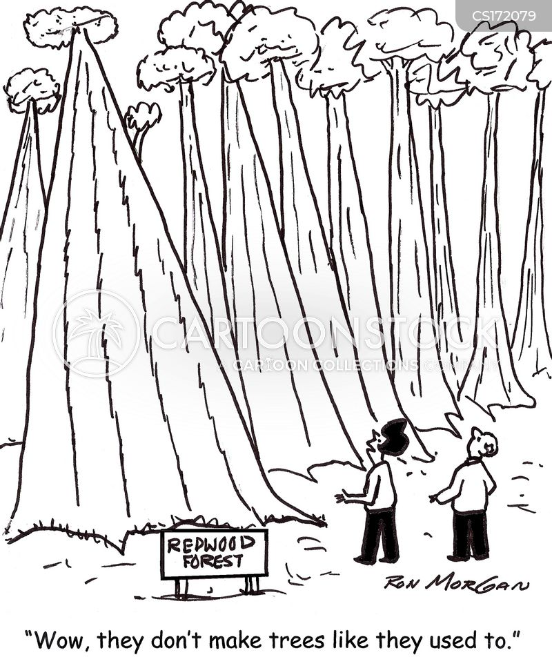 loggers cartoon