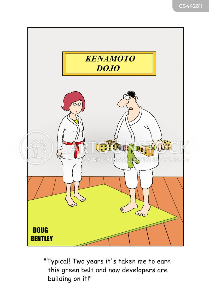 taekwondo cartoon