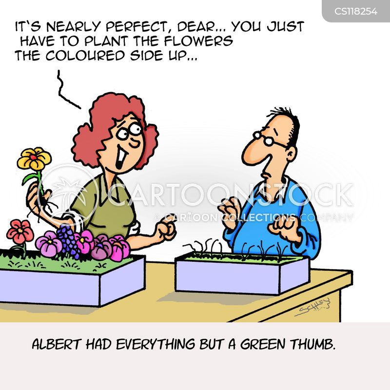 flower pot cartoon