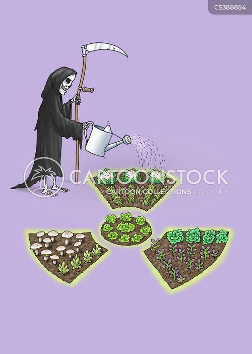 growing vegetables cartoon