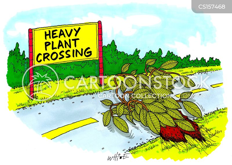 heavy loads cartoon