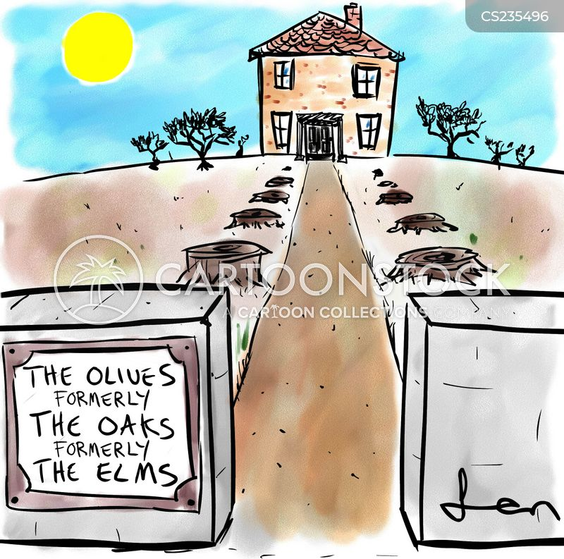 oaks cartoon