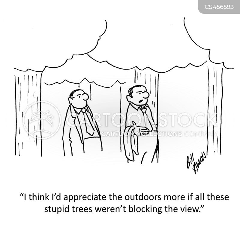 view points cartoon
