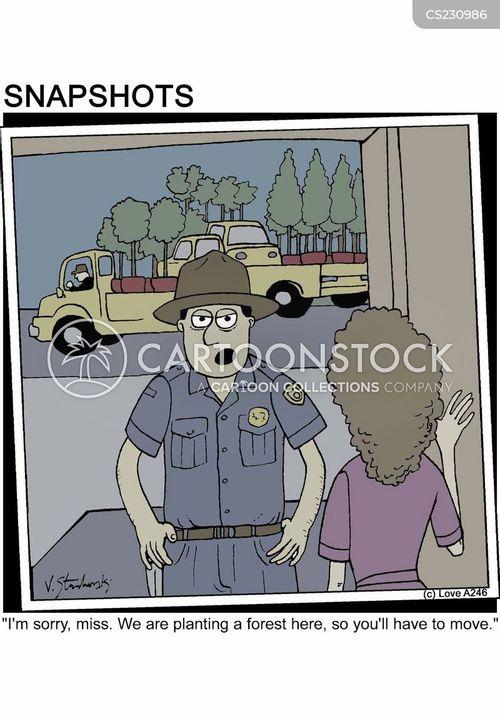 untamed cartoon